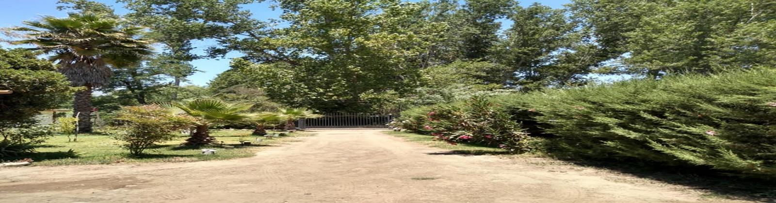 Paine, R. Metropolitana, ,Parcela,Venta,1052